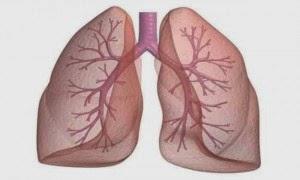 طعام واحد يقوم بتنظيف الرئتين من اثار التدخين