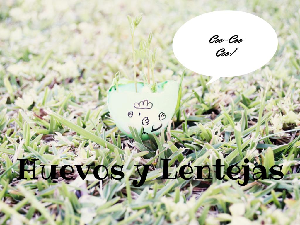 huevos-teñidos-colores-lentejas-plantar-dye-colour-eggs-lentil-plant-entre-hermanos-brothers