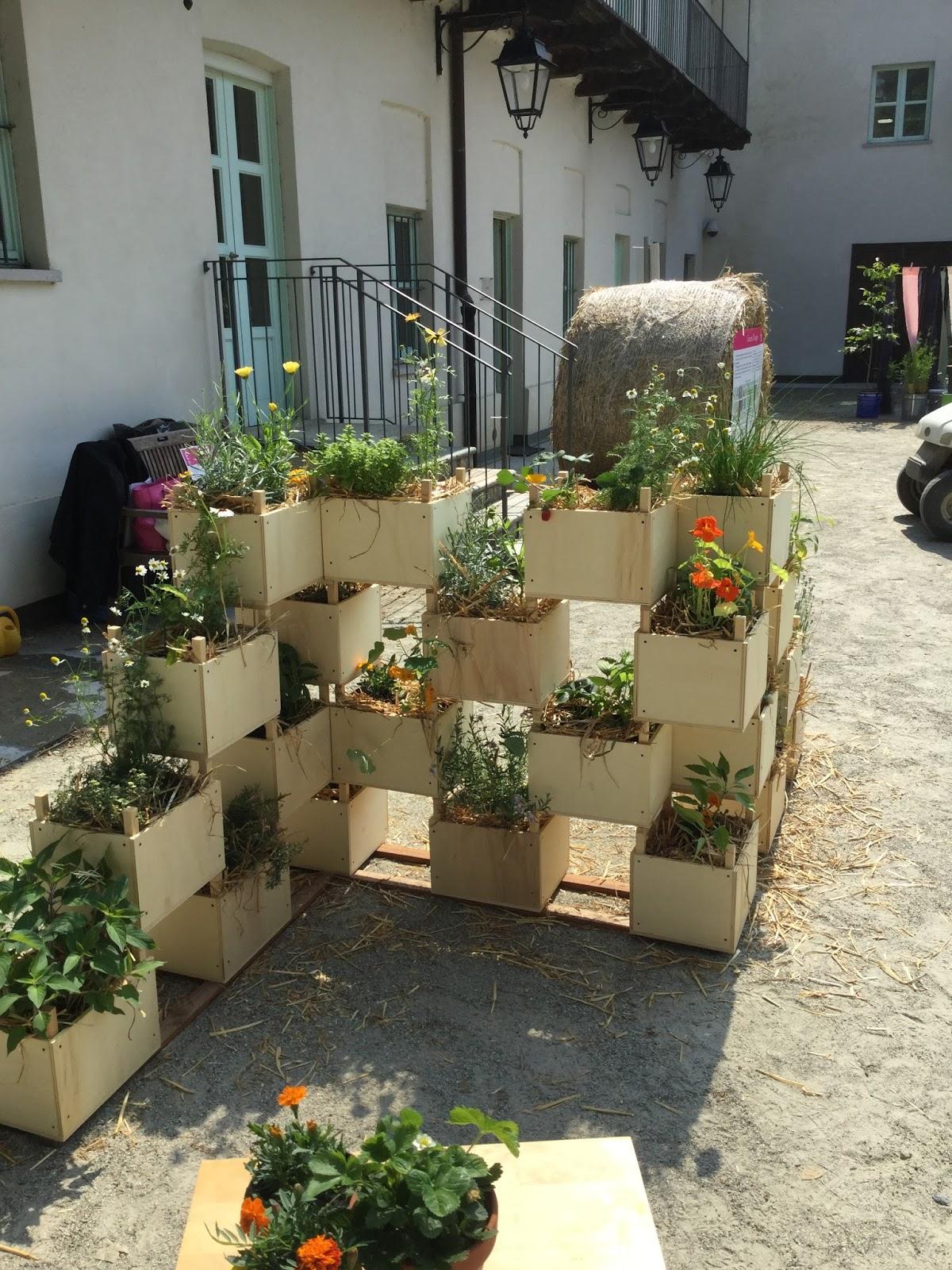 Separe 39 vegetale sfumature verdi for Piccoli giardini fioriti