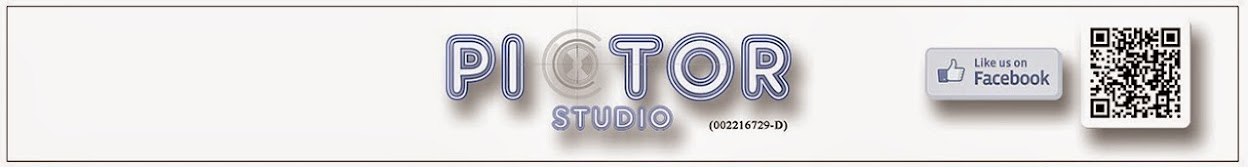 Pictor Studio