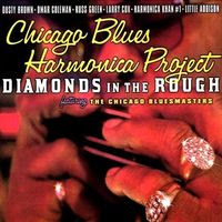 diamonds in the rough (2005)
