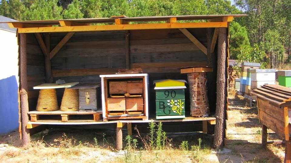 Museu do mel e da apicultura