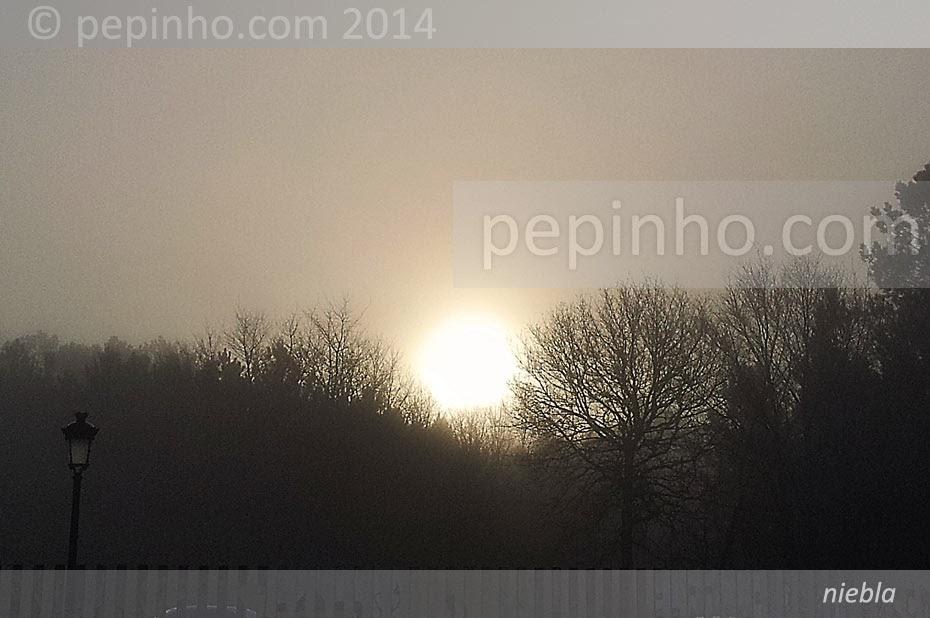 Niebla en el trabajo (26 febrero 2014)