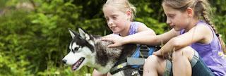 Landal Park mit Hund
