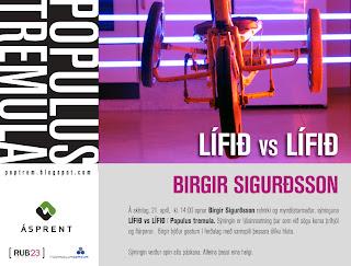 Birgir-Sig-p%25C3%25A1skar-2011-web