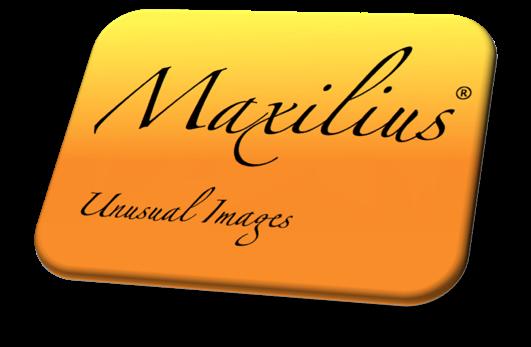 Maxilius