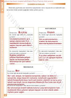 6. Sınıf Sosyal Bilgiler Altın Yayınları Öğrenci Çalışma Kitabı Cevapları Sayfa 80