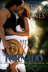 NEW RELEASE! Hot Alpha Male Cowboy Romance Set in The Hill Country of Texas! Only .99!