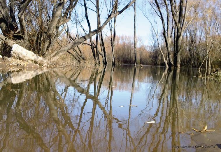 fot de l rio