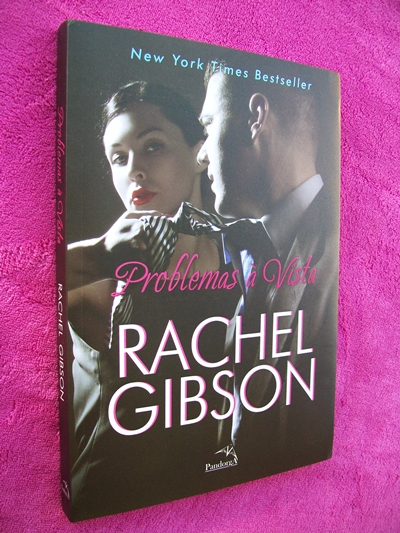 Problemas À Vista - Rachel Gibson (Chinooks Hockey Team - Livro 05)
