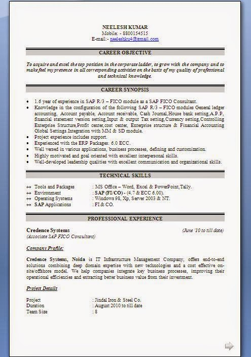 sap abap fico resume resume sample picturesque resume example with professional summary as sap and experience