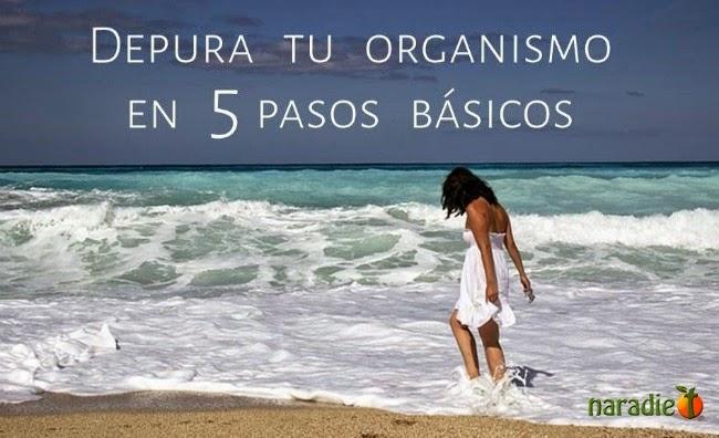 Cómo depurar tu organismo en 5 pasos básicos