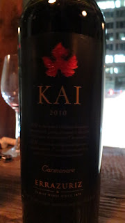 Wine Review of 2010 Errázuriz Kai