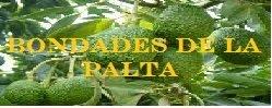 BONDADES DEL PALTO