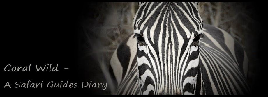 Coral Wild - A Safari Guides Diary