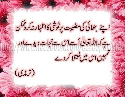 Zareen Urdu Aqwal Quotes Quote