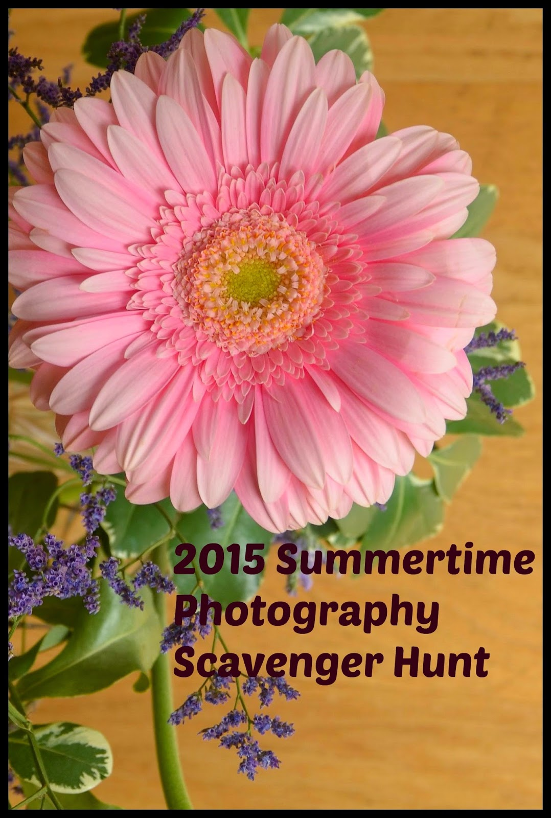 Photo Scavenger Hunt 2015