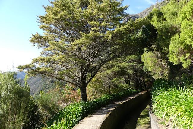 Levadawanderung auf Madeira; Levada