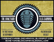 I proudly submitted to The Boneyard blog carnival