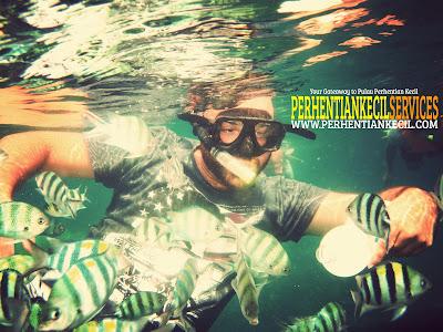 snorkeling in Perhentian, Perhentian package, Perhentian snorkeling package, the best snorkeling trip in Perhentian Island, Terengganu, Malaysia.