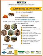 Curso Básico de Apicultura - UFERSA - Mossoró - RN - Fev. 2017