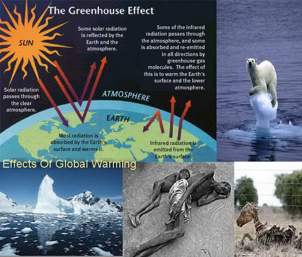 Effects and consequences of global warming topix effects and consequences of global warming ccuart Image collections