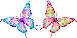 Somos 24 borboletas: