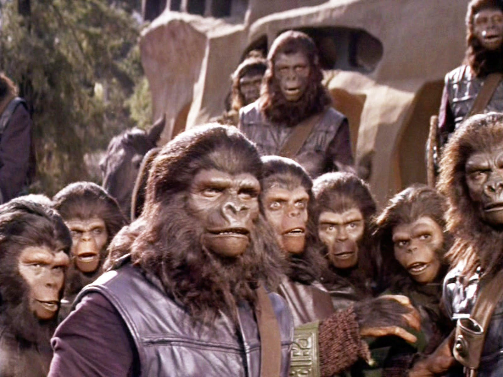 planet of the apes 1968 essays Notes about planet of the apes, 1968, directed by franklin j schaffner, with charlton heston, roddy mcdowall, kim hunter, available from turner classic movies.