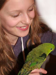 Our oldest Granddaughter with Charlie, her pet lineolated parakeet.