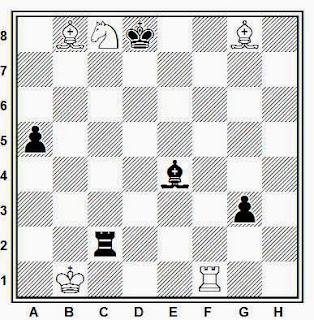 Estudio artístico de ajedrez compuesto por Iuri Akobia (Copa del Mundo de 2010)