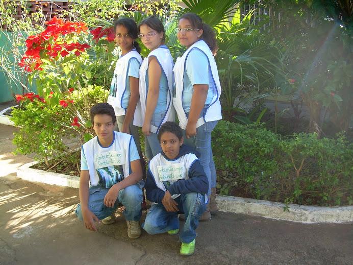 Ambiente Limpo - Ambiente Vivo 2011