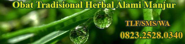 Obat Sipilis Herbal Manjur Ampuh Alami