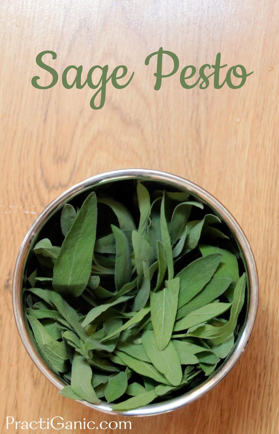 Sage Pesto