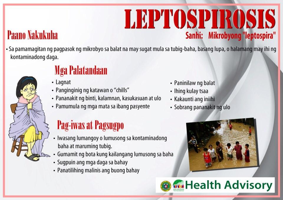 Wazzup Dok Leptospirosis