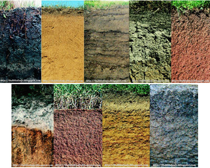 Image gallery different soils for Information about different types of soil