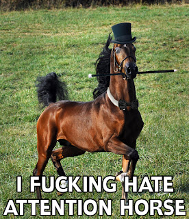 funny hipster horse with hat
