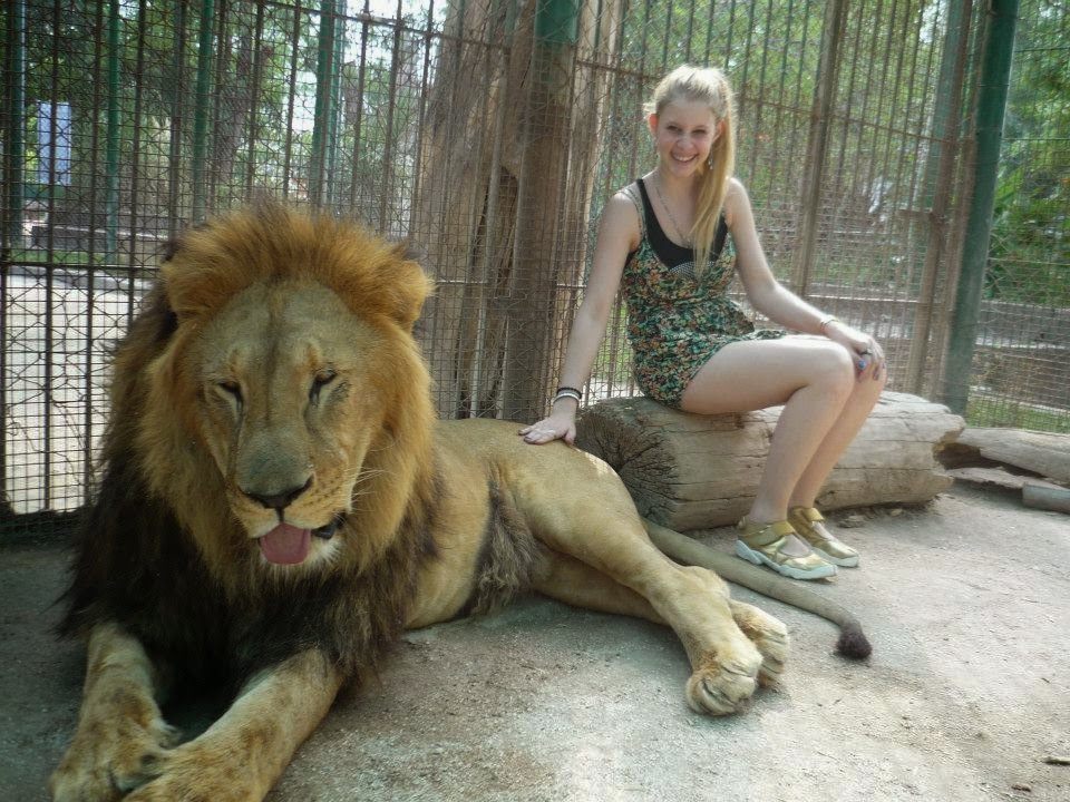 Con los leones