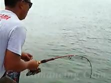 Gila Mancing Ikan Dapat Pari Alhamdulillah