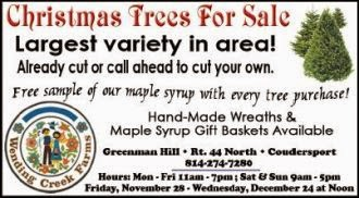 11-28 Wending Creek Christmas Trees