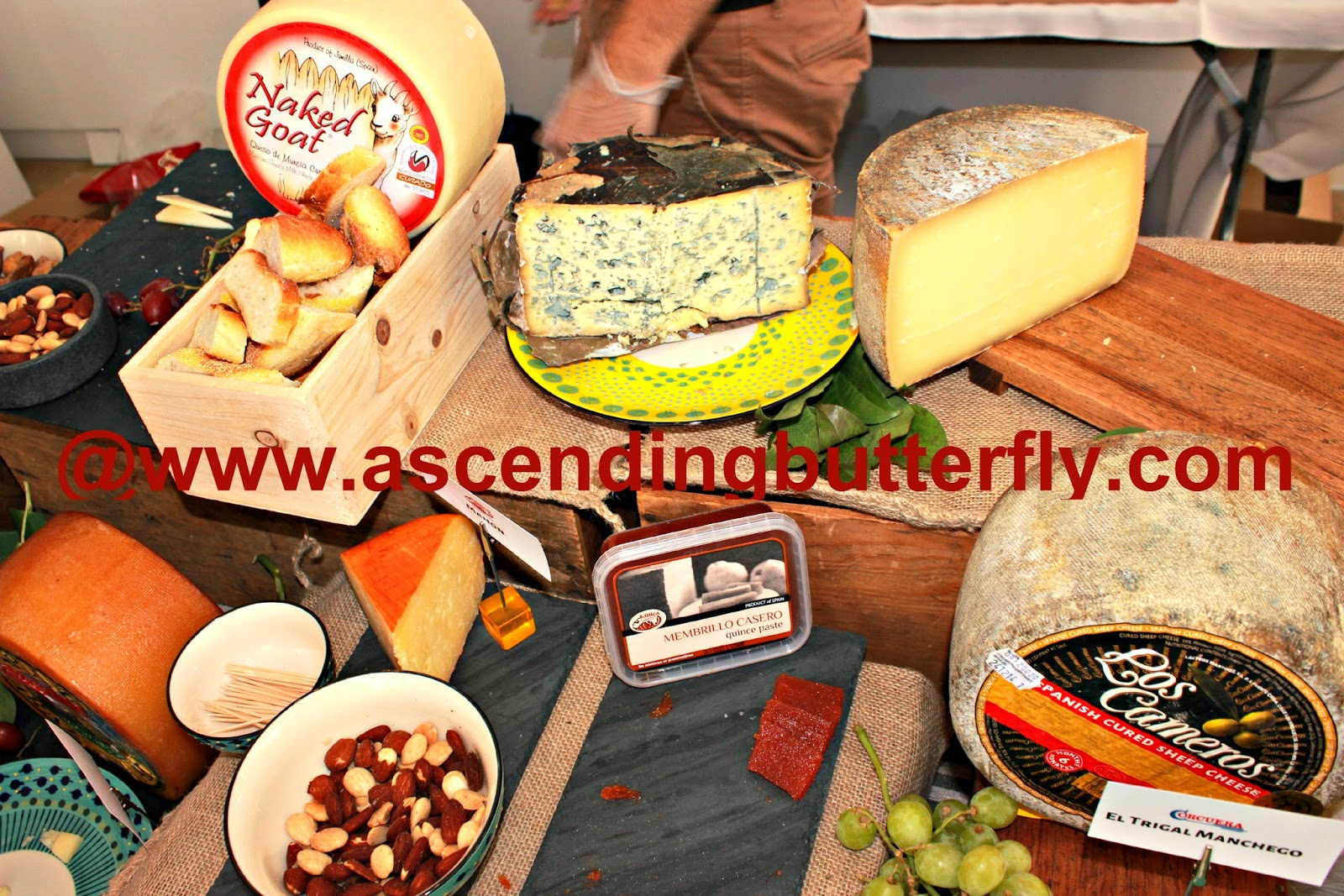 assorted cheeses featured at Spain's Great Match