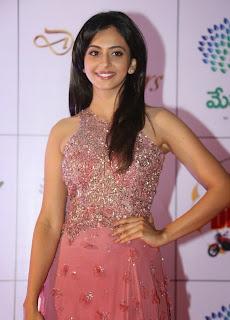 Actress Rakul Preet Singh Latest Pictures in Long Dress at Memu Saitam Dinner with Stars Red Carpet 18