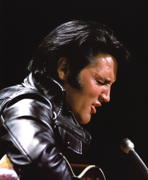 Elvis Presley Hairstyle Men Hairstyles