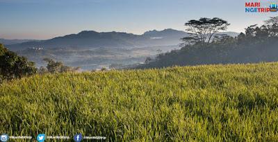 10 Kota Paling Dingin Di Indonesia