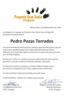 RECONOCIMIENTO POR PARTE DEL PROYECTO GRAN SIMIO URUGUAY