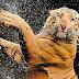 """""""Сбъркана"""" котка? Не, просто тигър"""