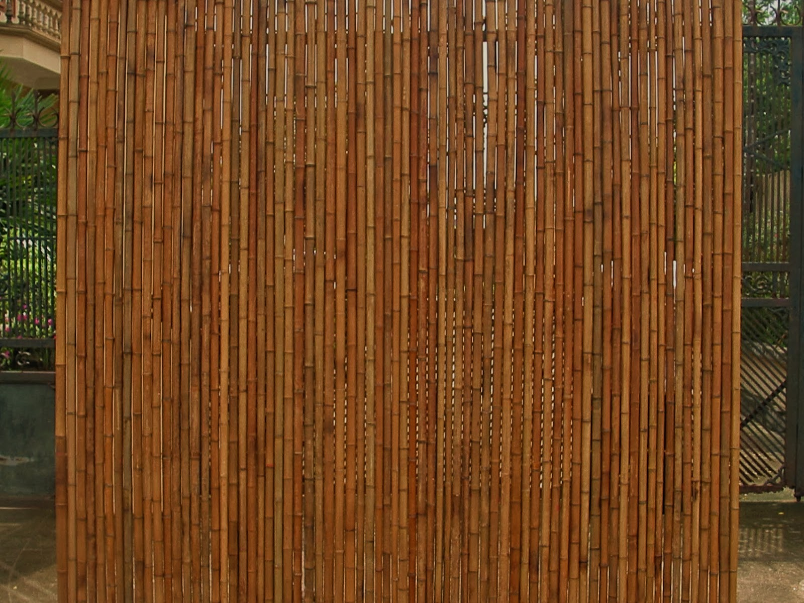 Rolled bamboo fences bamboo fencing big bamboo poles bamboo high quality bamboo fencing best bamboo cane bound as known highest bamboo cane from southeatern asian most quality bamboo growth top quality bamboo baanklon Gallery