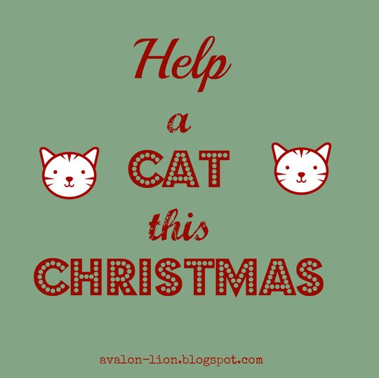 help a cat this christmas