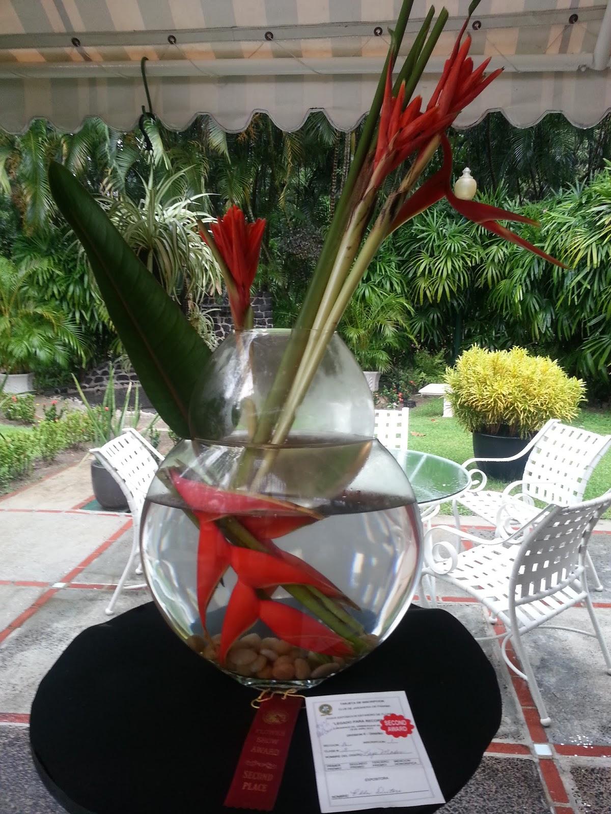 Arreglos florales creativos dise os sumergido o bajo agua - Arreglos florales creativos ...