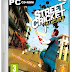 Street Cricket 2010 PC Game