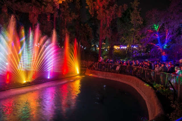 LA Zoo Lights 2015